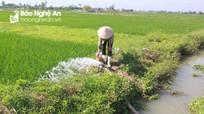 Theo bà ra ruộng bơm nước cho lúa, cháu bé 6 tuổi đuối nước thương tâm