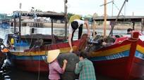 Ngư dân Nghệ An trúng đậm 'lộc biển' sau mưa bão