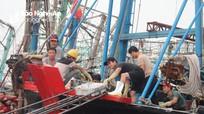 Tốc độ tăng trưởng giá trị sản xuất nông, lâm, ngư của Nghệ An đứng thứ 5 cả nước