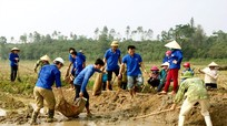 Nhiều hoạt động thiết thực chào mừng Ngày thành lập Đoàn TNCS Hồ Chí Minh