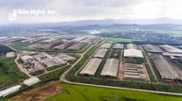 Nghệ An - Quảng Ninh trao đổi về thu hút đầu tư vào nông nghiệp