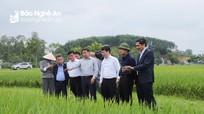 Bộ trưởng Bộ NN&PTNT kiểm tra công tác tái đàn lợn và sản xuất vụ xuân tại Nghệ An