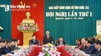 Hội nghị lần thứ nhất, Ban Chấp hành Đảng bộ tỉnh Nghệ An khóa XIX