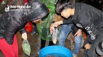 Cá chép đắt hàng ở chợ quê