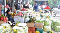 Hoa quả ở chợ đầu mối Vinh ế ẩm, tiểu thương xót xa vứt bỏ