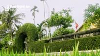 Mướt mắt những dãy tường rào xanh ở vùng nông thôn mới Nghệ  An