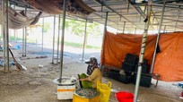 Nghệ An: Lo ngại dịch bệnh, nhiều chợ chưa có lệnh cấm cũng vắng hoe