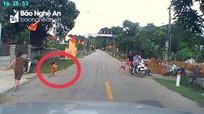 Tài xế hú hồn vì em bé bất ngờ chạy ngang đường ở Quỳ Hợp