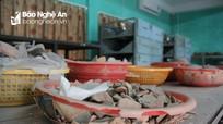 Hàng nghìn cổ vật 'kêu cứu' trong Bảo tàng Nghệ An