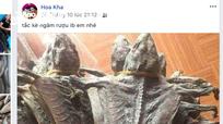 Nữ cán bộ xã ở Nghệ An lên Facebook rao bán động vật hoang dã