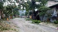 Nghệ An: Lốc xoáy kèm mưa đá khiến hơn 50 nhà dân bị tốc mái