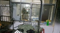 Kẻ đốt bệnh viện, hành hung điều dưỡng ở Nghệ An bị khởi tố