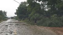 Nghệ An: Bất ngờ mưa đá kèm lốc xoáy khá mạnh vào sáng Mồng 1 Tết