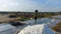 Diêm dân Nghệ An quần quật làm việc giữa trưa nắng 40 độ