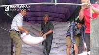 Tân Kỳ tiếp nhận 32 tấn gạo hỗ trợ cho học sinh vùng đặc biệt khó khăn
