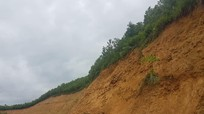 Mưa lớn kéo dài, xuất hiện nhiều điểm sạt lở nghiêm trọng ở Con Cuông