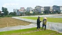 Bất chấp khuyến cáo, nông dân ở Nghệ An gieo mạ sớm, không phủ nilon
