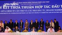 Vinamilk đầu tư 4.000 tỷ đồng xây dựng trang trại bò sữa ở Cần Thơ