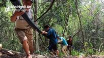 Nắng nóng khô kiệt, người dân vùng cao Nghệ An tự xây bể, lắp đường ống 'khủng' dẫn nước về bản