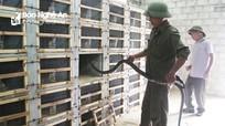 Người đưa nghề nuôi rắn hổ mang về Đồng Văn