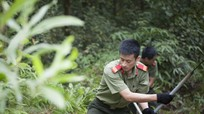 Hơn 700 đoàn viên thanh niên ra quân phòng chống cháy rừng