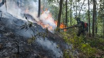 Cận cảnh người dân dập lửa cứu rừng