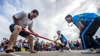 Nghệ An: 312.611 hộ hội viên nông dân được công nhận gia đình văn hóa