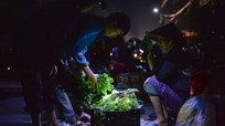 Soi đèn đi chợ ban đêm ở Nam Đàn