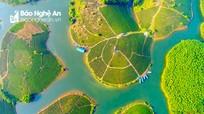 Đảo chè Nghệ An: Điểm du lịch sinh thái hấp dẫn