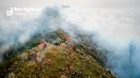 Hành trình chinh phục đỉnh Phà Cà Tủn 2.500m của phóng viên Báo Nghệ An