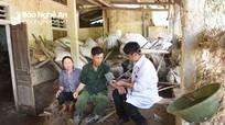 Người dân vùng lũ Nghệ An cần đặc biệt cẩn trọng với  các loại dịch bệnh