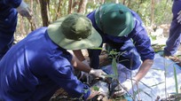 Đội quy tập của Nghệ An và hành trình tìm đồng đội trên đất bạn Lào