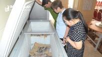 Phát hiện khách sạn ở Nghệ An tự ý gắn sao, vi phạm an toàn thực phẩm