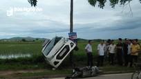 Tránh xe máy đi ngược chiều, taxi lộn nhiều vòng gác thân lên cây bên đường