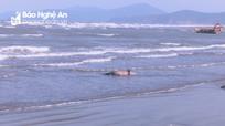 Phát hiện thi thể người đàn ông đeo chuỗi hạt cườm trôi dạt trên bãi biển