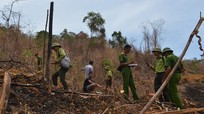 Thanh Chương chỉ đạo xử lý thông tin trưng biển 'cấm quay phim, chụp ảnh' để khai thác rừng