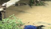 Nghệ An: Phát hiện thi thể người đàn ông dưới cầu ở tỉnh lộ