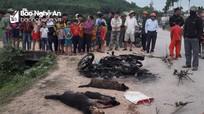 Nghi trộm chó, nam thanh niên bị đánh tử vong, đốt xe máy