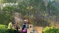 Dập đám cháy từ bếp nhà dân lan sang rừng sản xuất