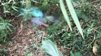 Nghệ An: Nghi can vụ án nam thanh niên chết bên bao tải đựng chó bị bắt