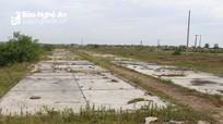 Đồng muối bỏ hoang ở Diễn Châu