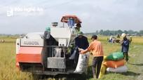 Huy động nguồn lực để hỗ trợ có hiệu quả cho HTX nông nghiệp