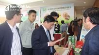 Nghệ An định hướng trở thành trung tâm sản xuất chế biến gỗ lớn nhất Bắc Trung Bộ