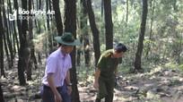 Công an Nam Đàn phát hiện kẻ dùng thuốc lá đốt rừng