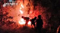 Hơn 1 ha rừng thông bị thiêu rụi sau vụ cháy ở Diễn An