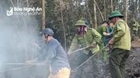 Hàng trăm người dân tham gia cứu rừng keo bị cháy ở Quỳ Châu