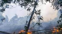 Kịp thời dập tắt lửa rừng tại vùng giáp ranh Đô Lương và Yên Thành