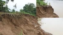 Nghệ An: Sau mưa bão, nhiều bờ sông sạt lở nghiêm trọng