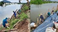 Nghệ An tập trung khắc phục công trình thủy lợi hư hỏng sau mưa lũ