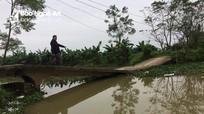 Nhiều công trình giao thông, thủy lợi ở Diễn Châu bị hư hỏng nặng
